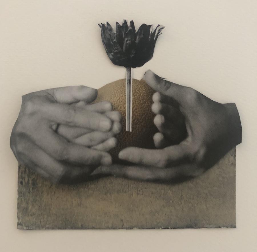 SEGUIMOS LUCHANDO,  COLLAGE, 13 X 13 cm, ©loreto saura 2020